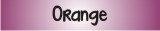 Website Banner Orange 160
