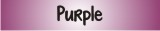 Website Banner Purple 160
